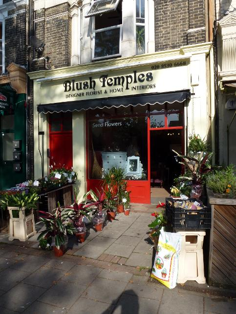 Blush Temples in Wanstead